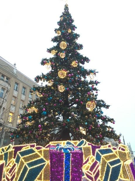 「活」生生的聖誕樹,比旁邊的所有建築都高